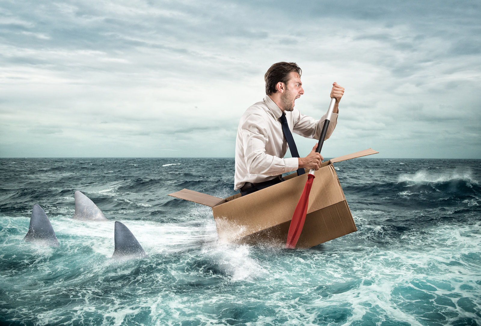 Anxious looking man worried about dental websites paddling in cardboard box followed by three sharks.